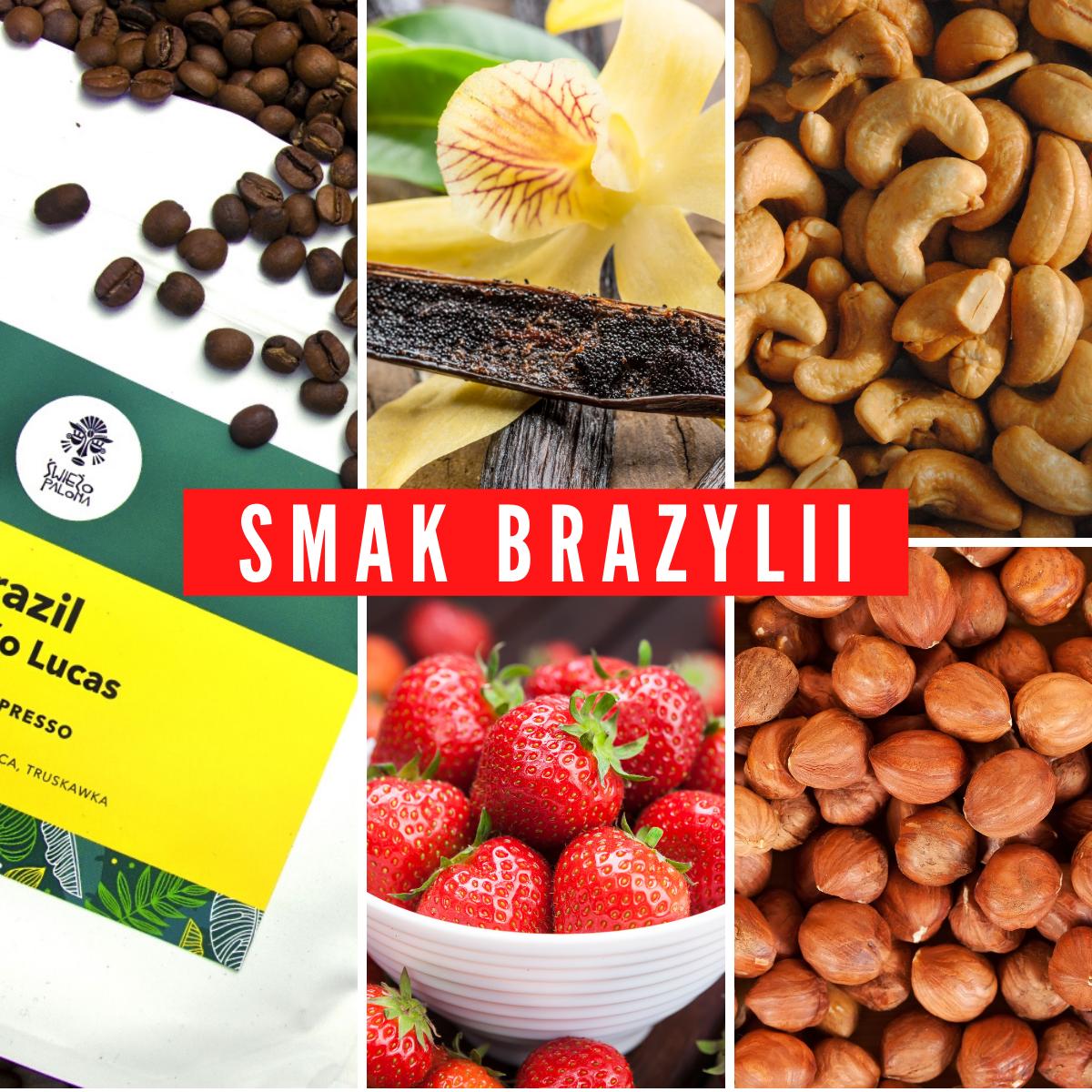 Poczuj wyjątkowy smak kawy z brazylii